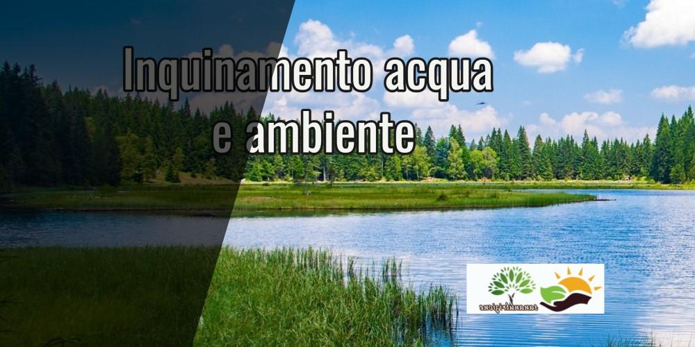 Inquinamento  acqua e ambiente