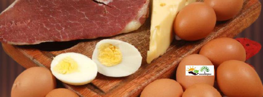 I grassi saturi sono dannosi oppure no