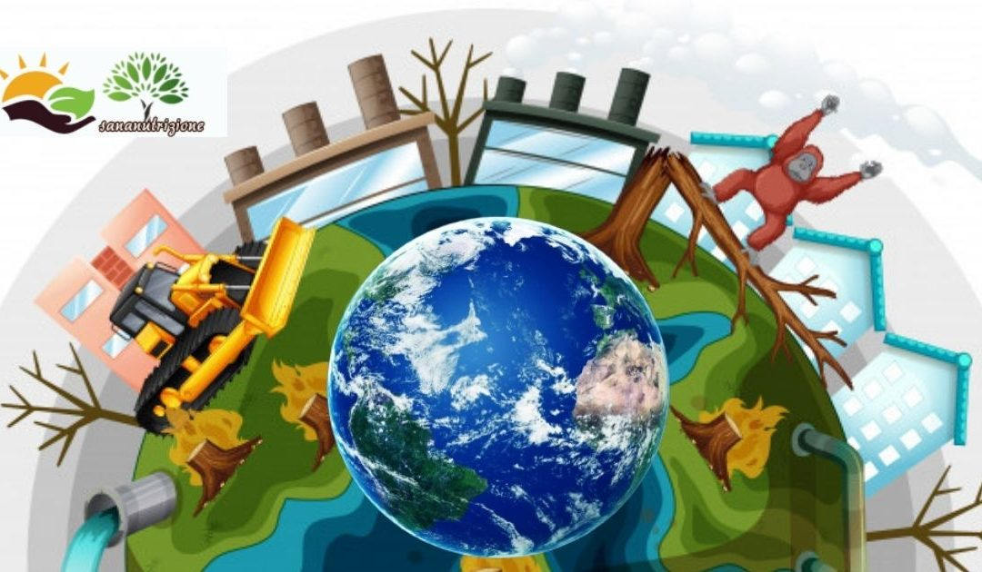 Inquinamento ambientale e derivati.